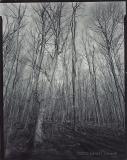 John Gerndt - Untitled