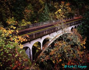 Sheppards Dell Bridge